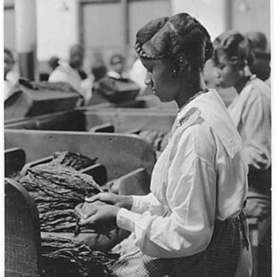 tobacco factory.jpg